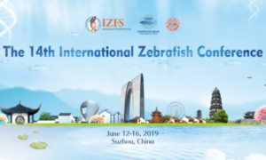 14Th International Zebrafish Conference